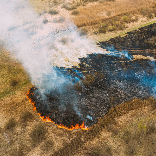 overhead view of wild fire