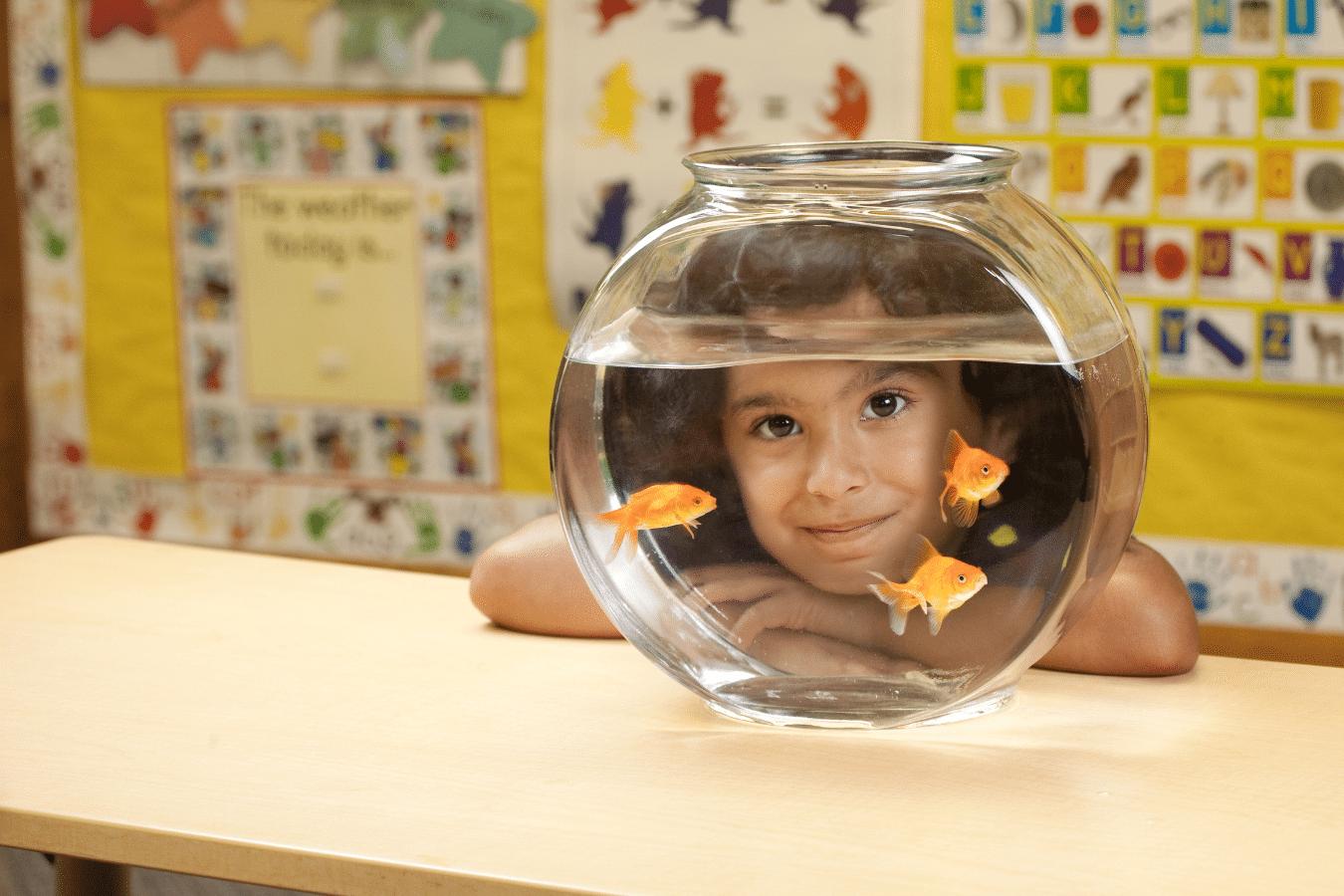 girl looking through fishbowl